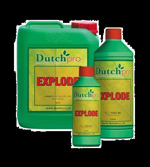 Dutch Pro Explode