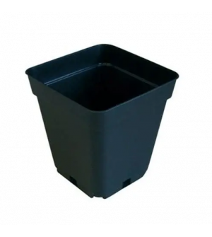 Square Pot